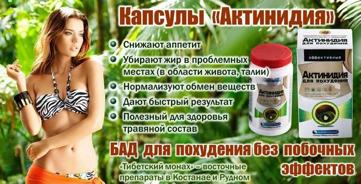 БАД для похудения Актинидия – эффективный препарат природного происхождения. Купить в аптеке Тибетский монах в Костанае и в Рудном