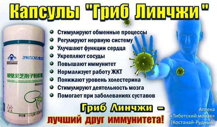 Ганодерма гриб бессмертия Ganoderma lusidum Линчжи Рейши - лучший друг иммунитета, купить в костанае и в Рудном